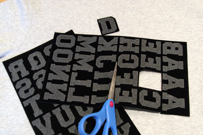 DIY Sweatshirt, Word Sweatshrt, Printed Sweatshirt, Iron-On Sweatshirt