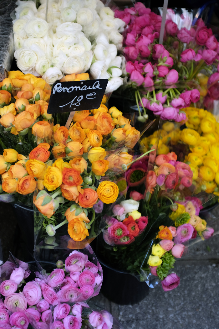 Paris in 4 Days travel diaries and photos - st. germain des pres peonies