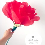 DIY :: Giant Crepe Rose