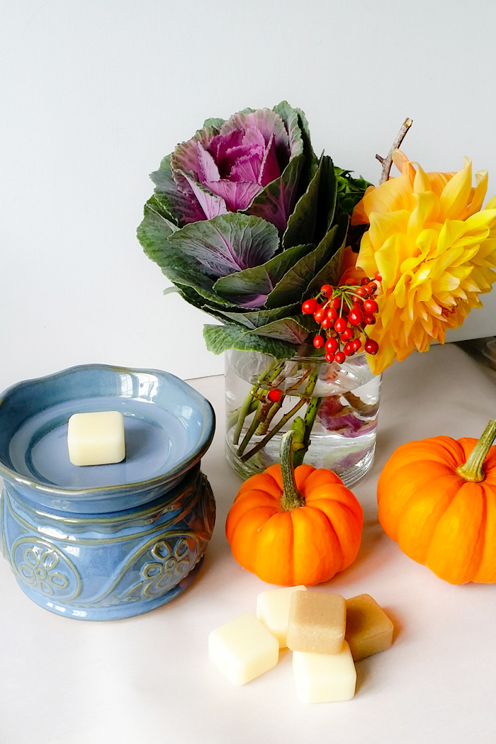 Glade Wax Melts Review