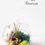 DIY :: Spring Terrarium