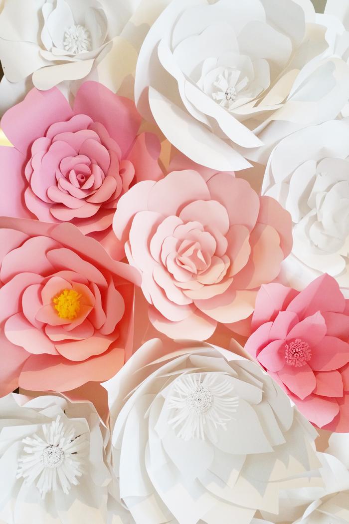Paper handmade flower backdrop