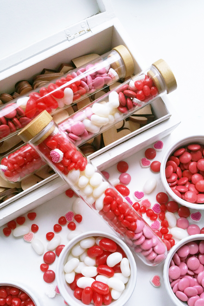 Valentines Test Tube Candy Gift Favors