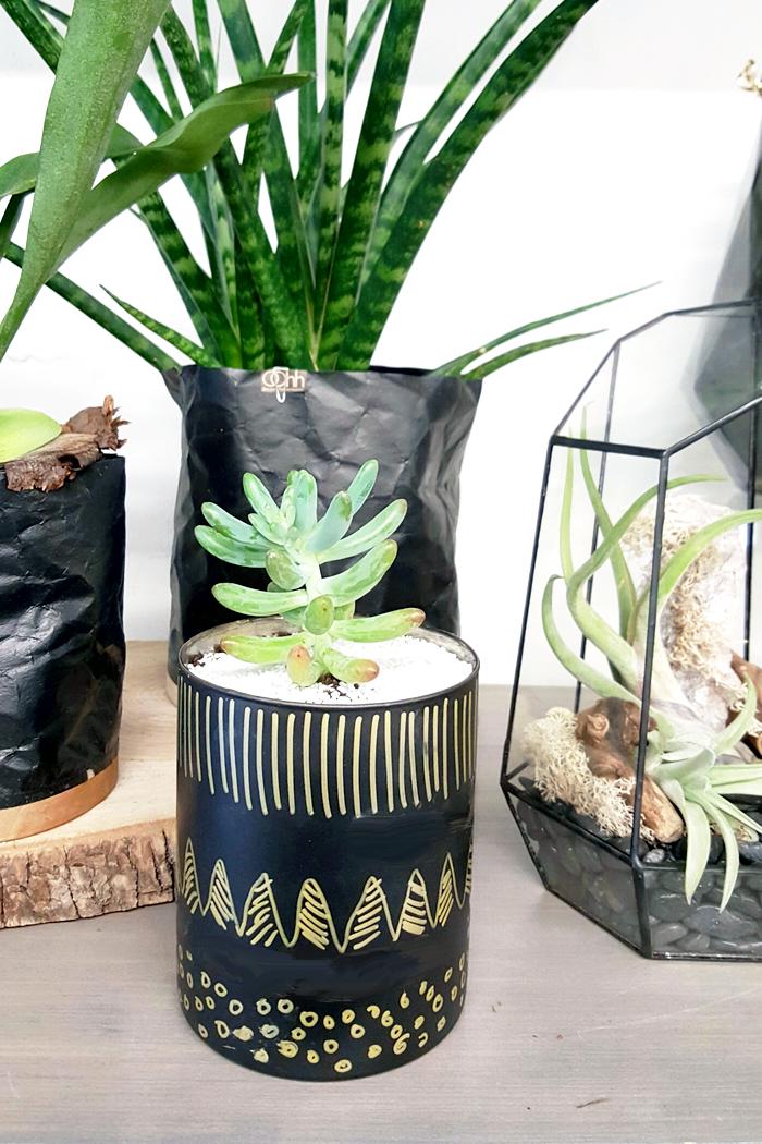 DIY Mini Succulent Planters 2