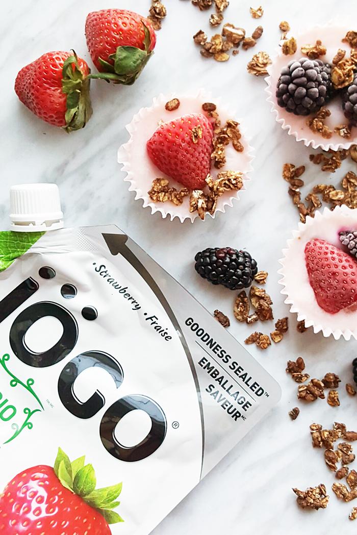 iogo large pouch yogourt bites
